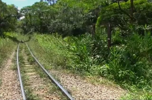 Mulher é atropelada por trem ao tentar fazer selfie em Piraquara