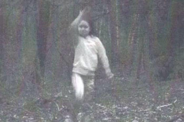 Espírito aparece em foto no meio do bosque e assusta moradores