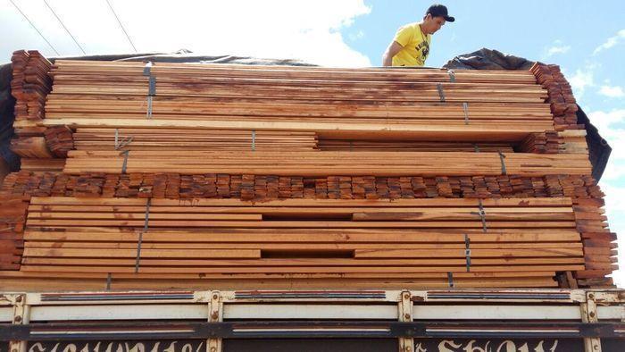 Carga de madeira ilegal apreendidana BR-343 (Crédito: Divulgação)