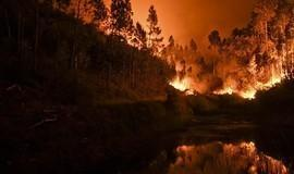 Incêndio em Portugal segue se alastrando; número de mortos vai a 64