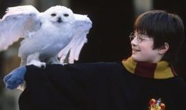 'Harry Potter e a Pedra Filosofal' comemora 20 anos