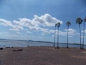 Lagoa do Cajueiro vira polêmica novamente em Luzilândia