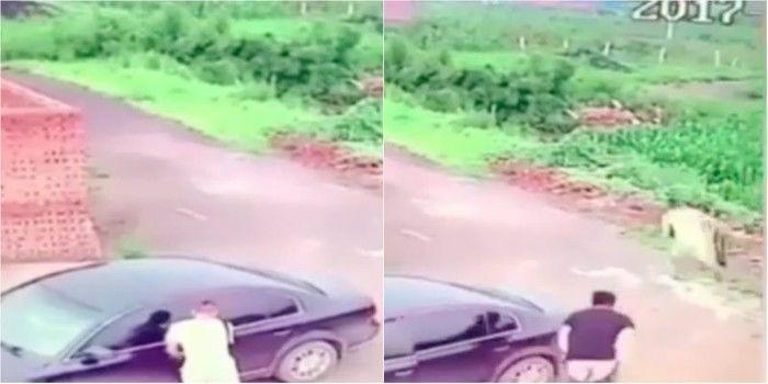 Ladrão tenta roubar carro com casal fazendo sexo dentro