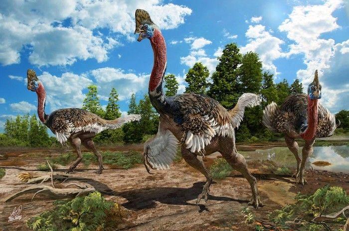 Fazendeiro chinês encontra fóssio de uma nova espécie de dinossauro