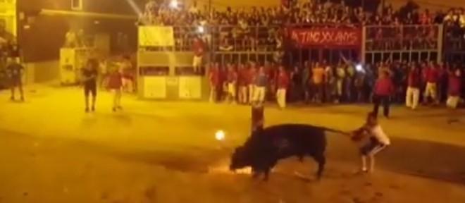 """Com fogo no chifre, touro comete """"suicídio"""" na Espanha"""