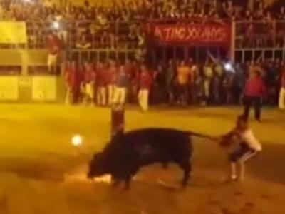 Com fogo no chifre, touro morre após maus tratos  na Espanha