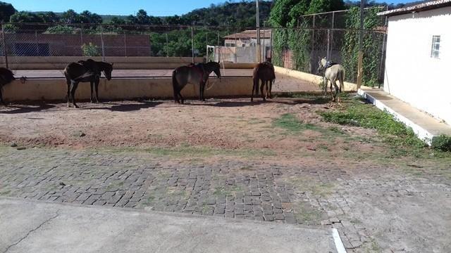 6ª Cavalgada de Dom Expedito Lopes - Imagem 4