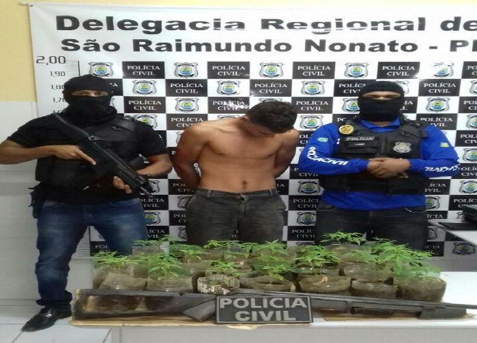 Homem preso com 80 pés de maconha (Crédito: Divulgação)