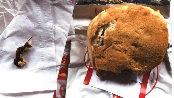 Mulher encontra rato em sanduíche e processa rede de fast food (Crédito: Reprodução/10TV - WBNS)
