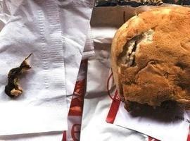 Mulher encontra rato em sanduíche e processa rede de fast food