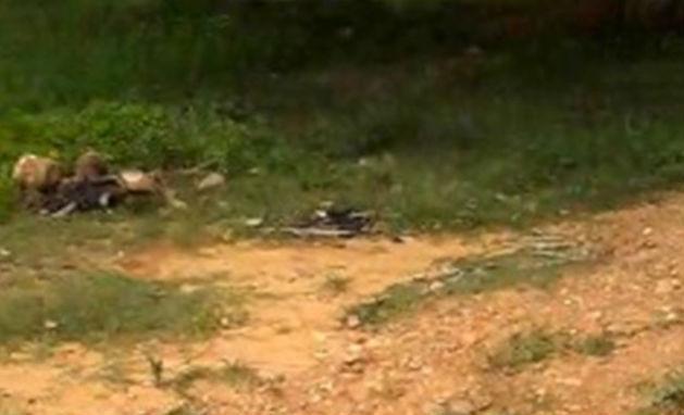 Corpo de caçador encontrado em mata (Crédito: Polícia Civil)