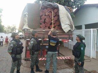Carga de madeira é apreendida pela Semar (Crédito: Semar)