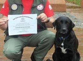 Conheça Camila, a cachorra que achou avião desaparecido