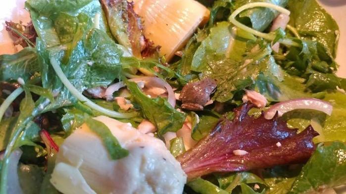 Mulher acha rã em salada e decide adotá-la  (Crédito: Reprodução/facebook)
