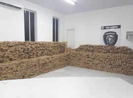 Polícia Civil apreende 3,6 toneladas de maconha no Maranhão
