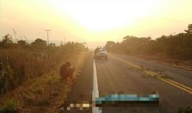 Jovem deita em rodovia para descansar e morre atropelado