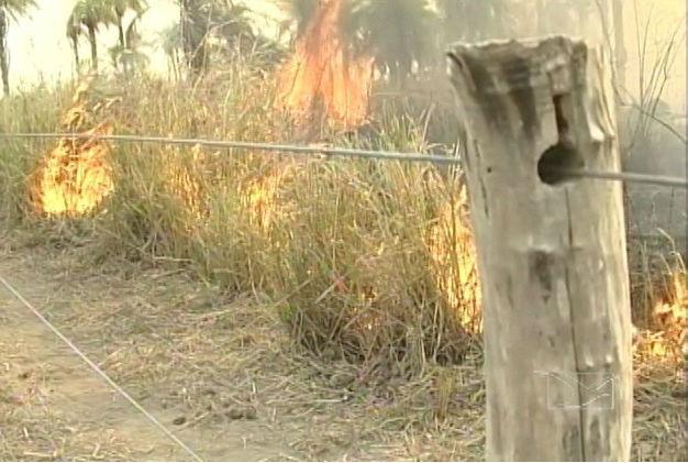 Queimadas no Maranhão preocupam (Crédito: TV Mirante)