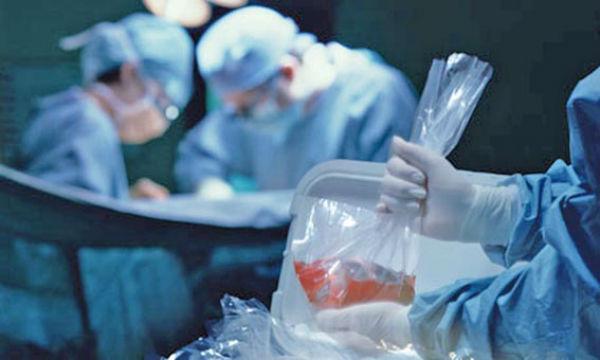 Neste ano já foram realizados 19 transplantes de rim no estado (Crédito: Reprodução)