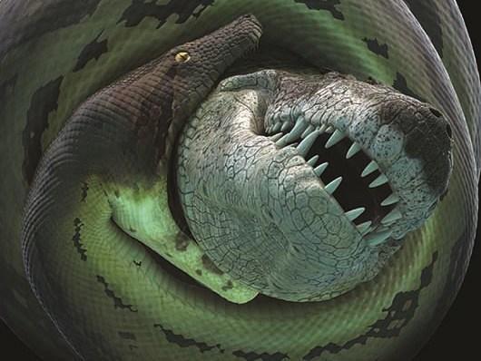 Cobra pré-histórica era maior que um ônibus e comia crocodilos