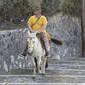 Turistas acima do peso são proibidos de montar em burros na Grécia