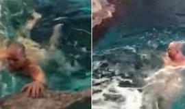 Pelado, homem mergulha em tanque com tubarões para alimentá-los