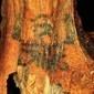 Cientistas descobrem identidade de múmia com tatuagem de 3 mil anos