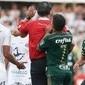 Dudu terá que pagar R$ 25 mil por ter empurrado árbitro em jogo