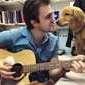 Veterinário conquista web por usar música para acalmar pacientes