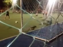 Cachorro 'defende' pênalti em partida de liga amadora; veja vídeo