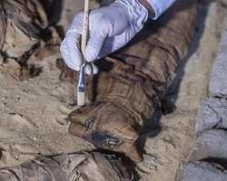 Gatos mumificados há mais de 6 mil anos são encontrados no Egito