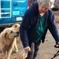 Cão passa 1 mês cuidando de casa destruída por incêndio nos EUA
