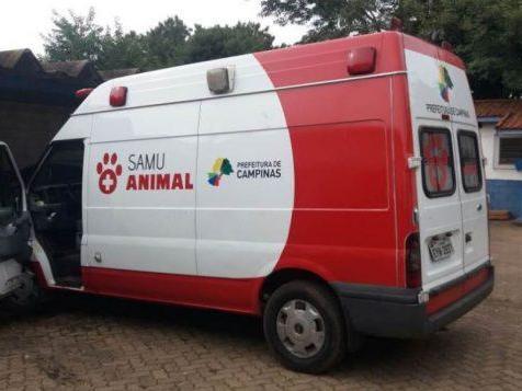 Vereador pede criação 1° SAMU Animal do Piauí em Parnaíba