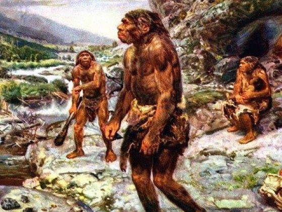 Por que os humanos perderam os pelos com a evolução?