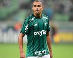 Palmeiras emprestará Papagaio ao Atlético-MG
