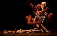 O Fórum Internacional de Dança(FID) completa 23 anos