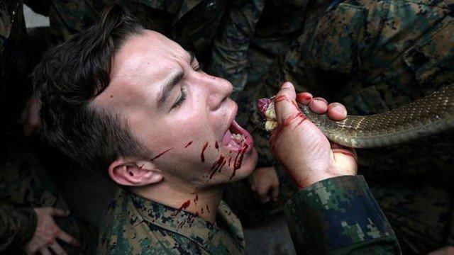 Exercício militar na Tailândia: cobra no 'cardápio' (Crédito: AFP)