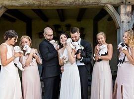 Noivos usam filhotes de cachorros como o buquê de casamento