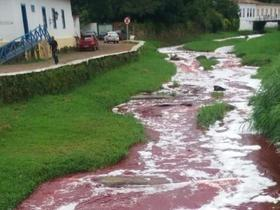 Caminhão carregado de sangue bovino tomba e forma