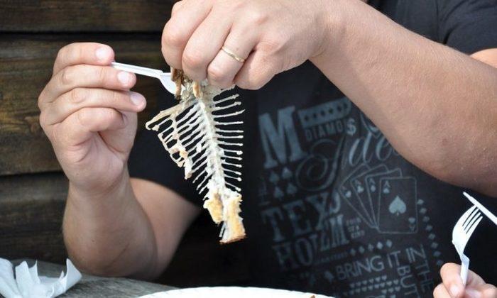 Espinha de peixe (Crédito: Reprodução)