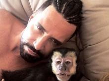 Latino vai ganhar diamante feito das cinzas do macaco Twelves