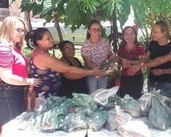 Prefeitura de Esperantina distribui 5 toneladas de peixes