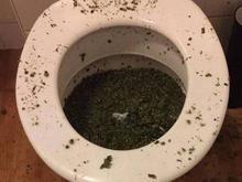 Criminosos tentam se livrar de droga e acabam entupindo sanitário