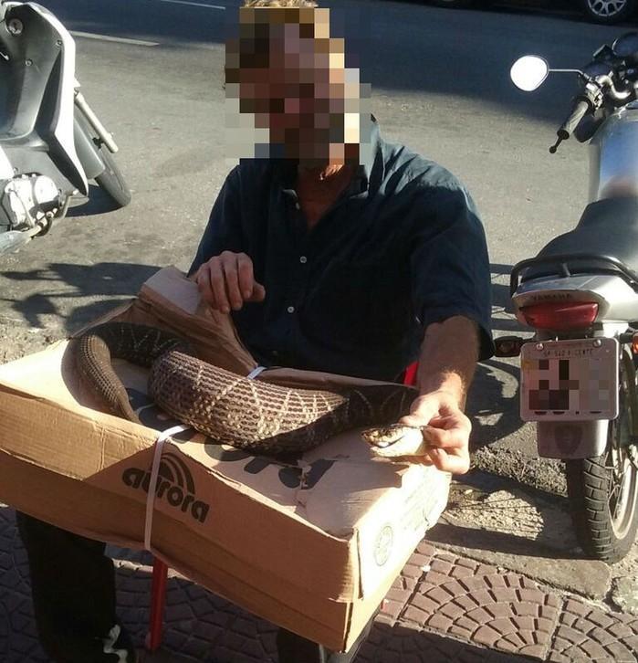 Foto mostra ambulante manuseando cobra em frente a bar em São Vicente, SP  (Crédito: Reprodução/G1)