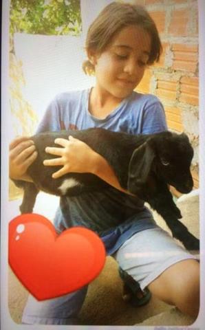 Luis Felipe morreu aos 13 anos (Crédito: Reprodução/Portal V1)