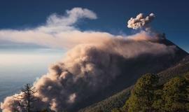 Cientistas encontram floresta intocada em topo de vulcão na África