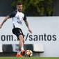 Santos pode ter violado regra da Fifa em troca de Zeca por Sasha