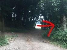 Jovem acredita ter fotografado fantasma em floresta do Reino Unido