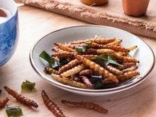 Mulher revela dieta tendo insetos: