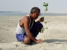 Homem planta árvores sozinho durante 40 anos e transforma a ilha