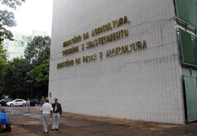 Agropecuária do Piauí cresce 126% e alcança maior produção da história